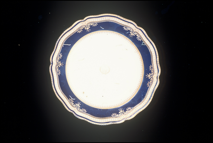 First-Class China  - A dinner plate recovered from Titanic