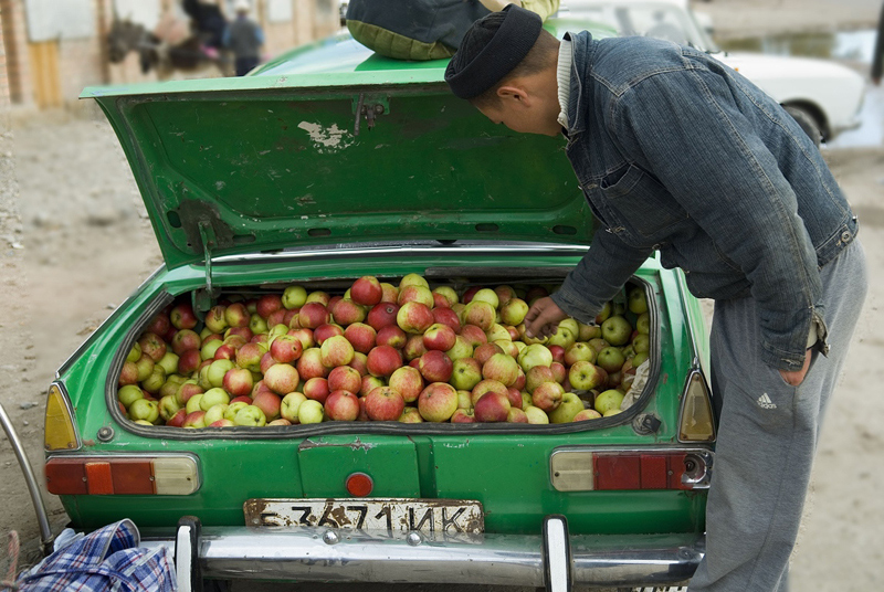 Apples for sale, Karakol, Kyrgyzstan