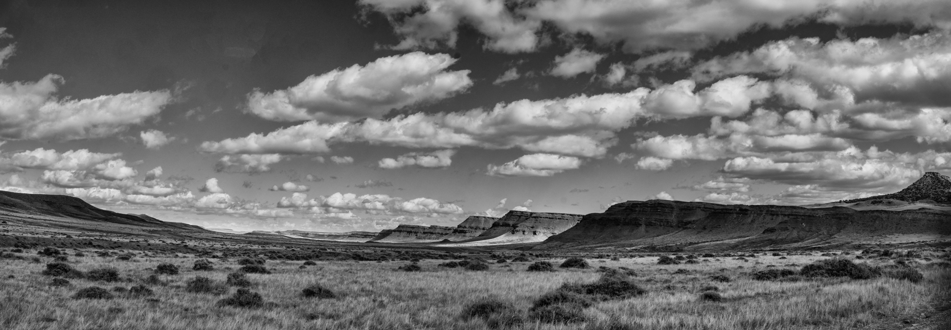 Landscape, Willow Creek Ranch, Wyoming